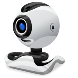 Веб-камеры (web-cam)