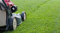 Аренда газонокосилки Honda