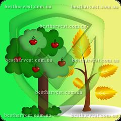 Средства для весенне-осенней защиты сада