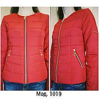 Куртка женская оптом от производителя.