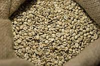 """Зеленый Кофе 250 г. для похудения Робуста """"Грейд"""" в зернах. Зерновой кофе xcoffee"""
