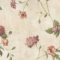 Chesapeake (Cottage Garden CG97014)