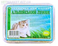 Альпийский лужок Трава для кошек (лоток), 80 г, Фауна