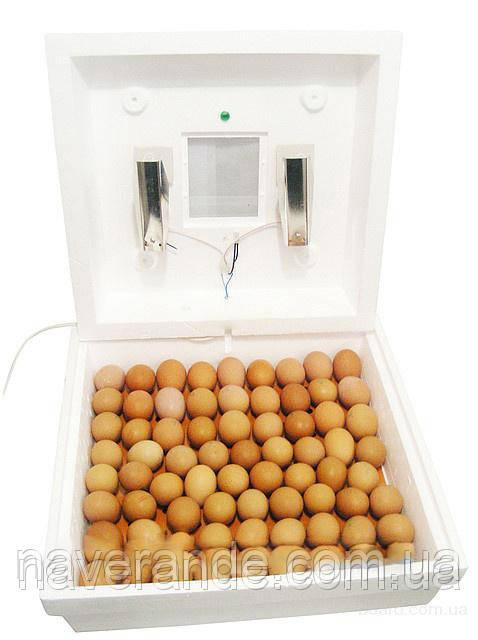 Инкубатор бытовой ламповый Рябушка-2 70шт (Механический терморегулятор)