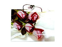 Пакет подарочный 35х26х11см Большой горизонтальный Розы на белом фоне