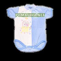 Детский боди-футболка р. 68 ткань КУЛИР 100% тонкий хлопок ТМ Незабудка 3080 Голубой1