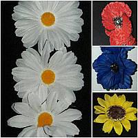 Головки ромашки (упаковка-200 шт диаметр цветка-8 см