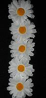 Головки ромашки (упаковка-500 шт диаметр цветка-5 см