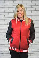 Женская молодежная  куртка-бомбер цвет темно серый + красный  р-42-54