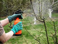Инсектицид Чистый Сад 5мл+5мл