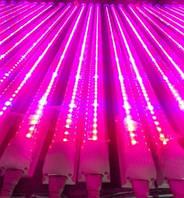 Фито светильник Т5 600мм 10 Ватт  Ecolend