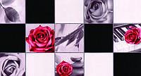 Обои влагостойкие мойка Шарм Классик 103-02 черно-красные
