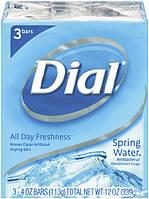 Dial Spring Water Antibacterial Deodorant Soap / Родниковая вода Антибактериальный 2х63G (США-Орыгинал)