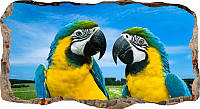 Светящиеся 3д Фото Обои Startonight Мир Животных Попугаи Декор стен Дизайн дома Интерьер