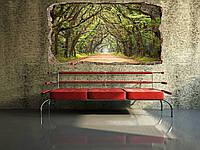 Светящиеся 3D обои Startonight Туннель из деревьев