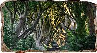 Светящиеся 3D обои Startonight Дорога через деревья