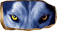 Светящиеся 3д Фото Обои Startonight Мир Животных Волчьи Глаза Декор стен Дизайн дома Интерьер