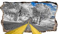 Светящиеся 3D обои Startonight Дорога со снегом