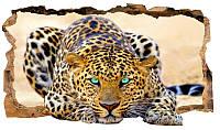 Светящиеся 3д Фото Обои Startonight Мир Животных Леопард Декор стен Дизайн дома Интерьер