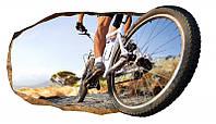Светящиеся 3D обои Startonight Колесо велосипеда