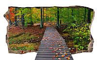 Светящиеся 3D обои Startonight Мост в лесу