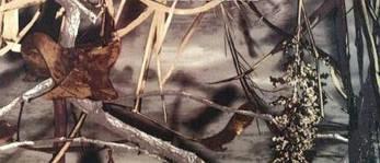 Ткань Дюспо бондинг-флис лес Собственное производство, фото 3