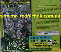 Шалфей мускатный сорт Нектар многолетнее эфиромасличное лекарственное  растение