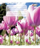 Тетрадь 24 листов клетка , Летний цветок, белоснежная бумага Голд Бриск