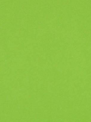 Дизайнерский картон салатовый матовый, 250 гр/м2