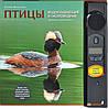 Ксения Митителло Птицы. Водоплавающие и околоводные. Звуковая энциклопедия (88144)