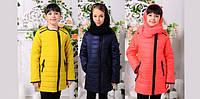Новинки. Пополнение ассортимента весенних детских курток