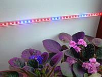 Фитолампа LED-полоса в алюминиевом корпусе - 50см. 36 светодиодов, 12В/10Вт.