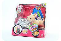 Мягкая игрушка «Собачка Chi Chi Love Simba» с сумочкой-раскраской 5895264
