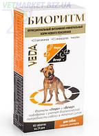 Биоритм функциональный витаминно-минеральный корм для собак средних размеров, 48 табл по 0,5 г, Веда