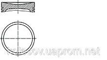 Поршни VW Golf (Scirocco, Jetta, Polo, Derby) 1.1 бенз. д.69,5мм.