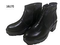 Ботинки женские демисезонные натуральная кожа черные  со змейкой (16170), фото 1