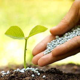 Химическое сырье для аграрного сектора и удобрения
