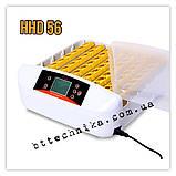 Інкубатор автоматичний HHD 56, фото 2