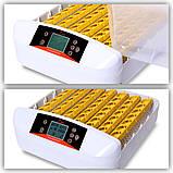 Інкубатор автоматичний HHD 56, фото 7