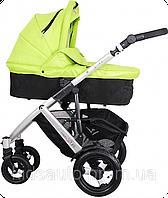 Универсальная детская коляска 2 в 1 Coletto Dante