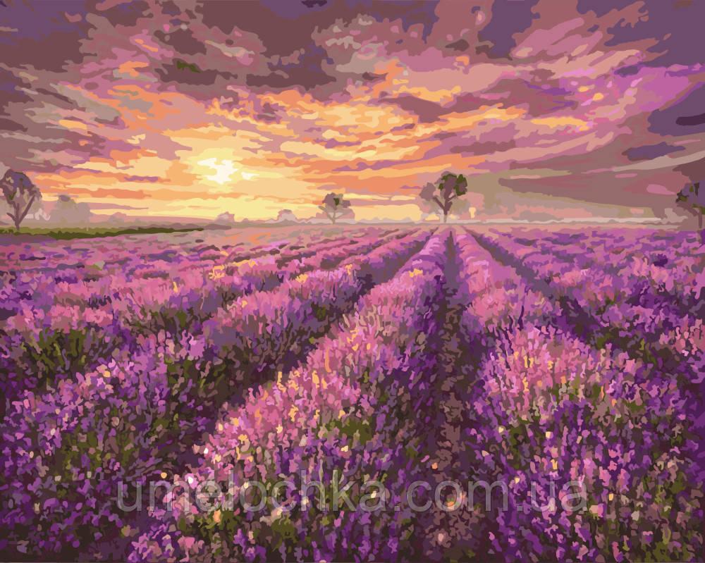 Картины раскраски на холсте цветы без коробки Лавандовое море (BK-GX3230) 40 х 50 см