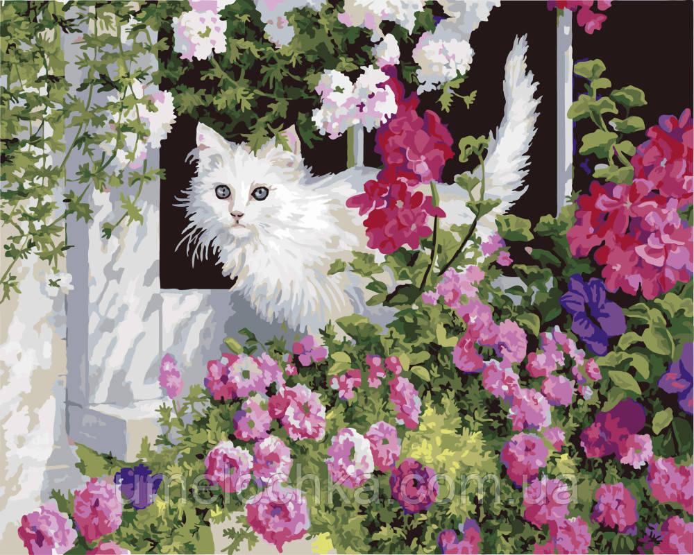 Картина-раскраска Белая кошка Худ Персис Клейтон Вейерс (BK-GX3248) 40 х 50 см