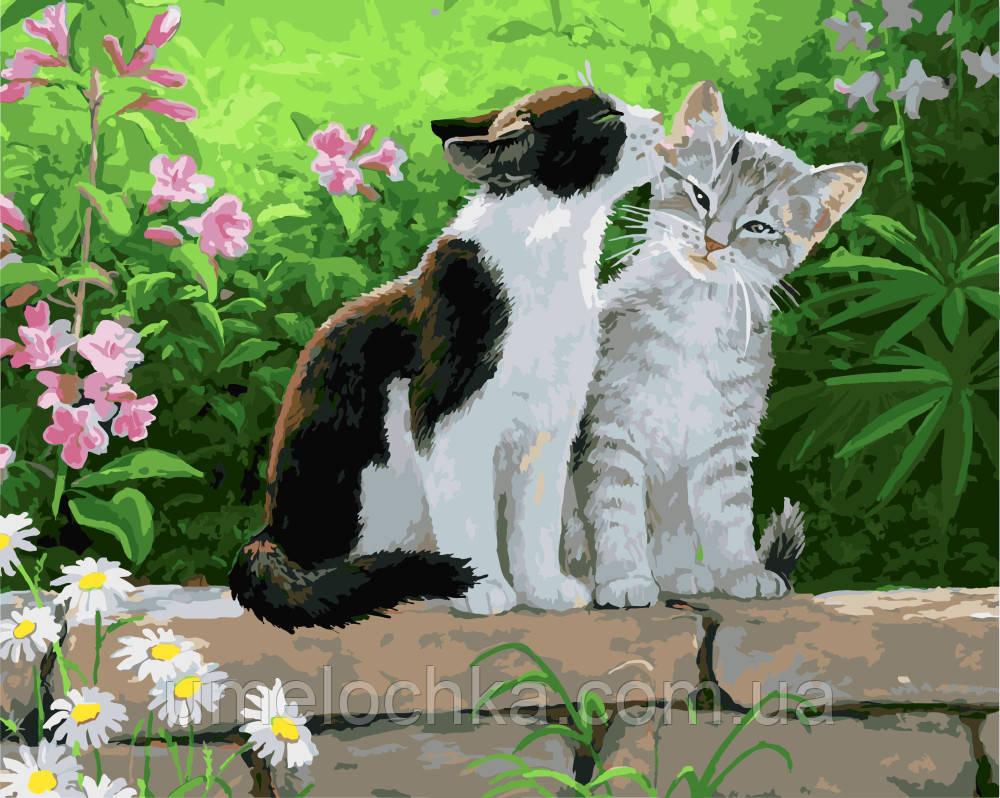 Раскраска по цифрам Пара котят Худ Персис Клейтон Вейерс (BK-GX3251) 40 х 50 см
