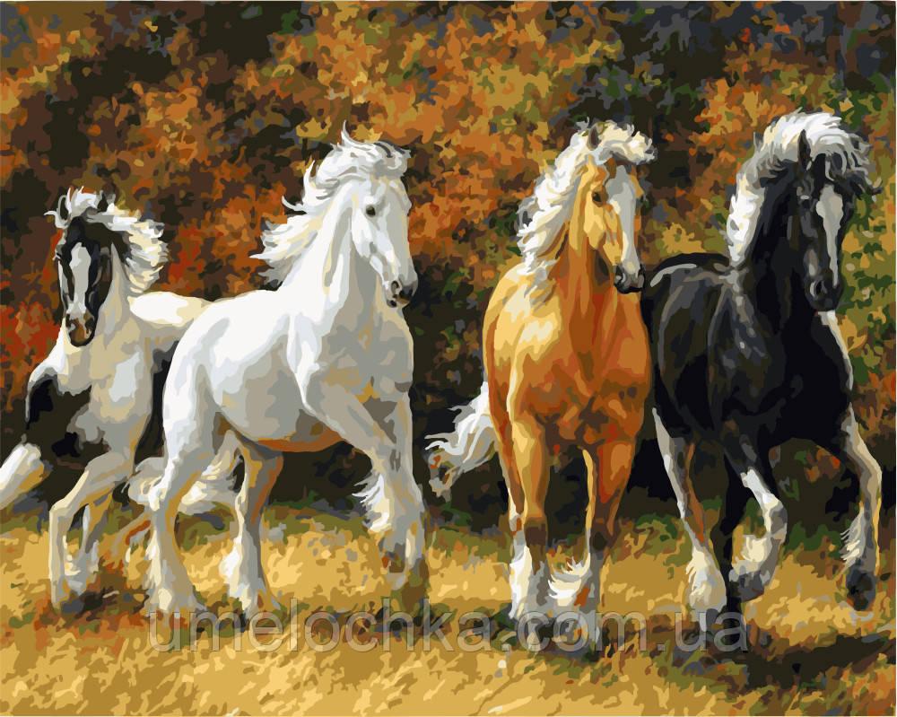 Рисование по номерам Благородные лошади (BK-GX3257) 40 х 50 см