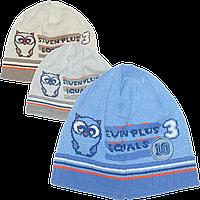 Детская вязаная шапочка без завязок, ТМ Ромашка р. 48-50