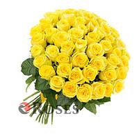 "Букет ""Солнце"" 51 жёлтая розы"