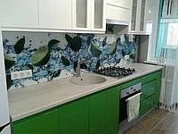 Установленные Стеклянные стеновые панели с Лаймом в воде, фото 1