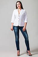 Женский демисезонный пиджак больших размеров Бостон