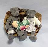 Мишко, м'яка іграшка, дівчинка, Н30 см, велюр, Подарунки, Дніпропетровськ, фото 4