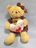 Ведмедик в сукні, 48х22 см, плюш, Подарунки, Дніпропетровськ, фото 2